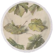Studies Of Vine Leaves, Willem Van Leen, 1796 Round Beach Towel