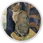 Study Of A Cat Round Beach Towel