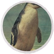 Study Of A Penguin Round Beach Towel