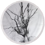 Study Of A Tree Round Beach Towel