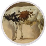 Study Of A Young Bull Round Beach Towel