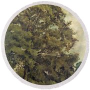 Study Of An Ash Tree Round Beach Towel