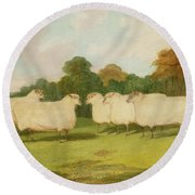 Study Of Sheep In A Landscape   Round Beach Towel