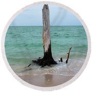 Stump Pass Tree In Color Round Beach Towel