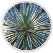 Stunning Agave Plant Round Beach Towel