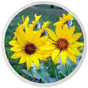 Stunning Wild Sunflowers Round Beach Towel