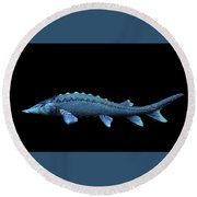 Sturgeon Round Beach Towel