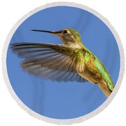 Stylized Hummingbird In Hover Round Beach Towel