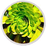 Succulent Close Up Round Beach Towel