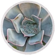 Succulent In Pastels Round Beach Towel