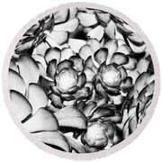 Succulents Monochrome Round Beach Towel