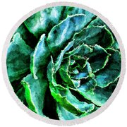 succulents Rutgers University Gardens Round Beach Towel