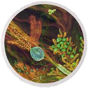 Sukkot-the Lulav Round Beach Towel