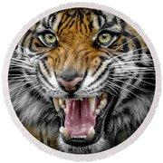 Sumatran Tiger Snarl Round Beach Towel