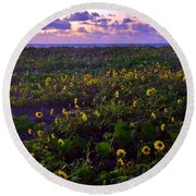 Summer Beach Daisies 1 Round Beach Towel
