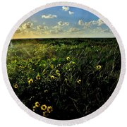 Summer Beach Daisy 2 Round Beach Towel