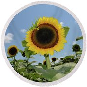 Summer Begin Round Beach Towel