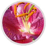 Summer Botanical Garden Art Pink Calla Lily Flower Baslee Troutman Round Beach Towel