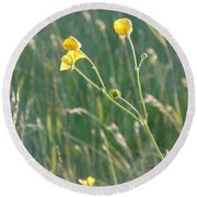 Summer Buttercups Round Beach Towel