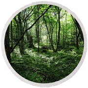 Summer Forest On A Sunny Day Round Beach Towel