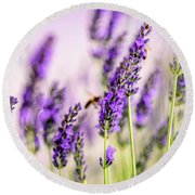 Summer Lavender  Round Beach Towel