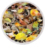 Summer Leaves For Fall Round Beach Towel