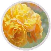 Golden Yellow Roses In The Garden Round Beach Towel