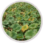 Summer Palace Lotus Pond Round Beach Towel