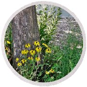Summer River Bank View             July            Indiana Round Beach Towel