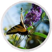Summer Swallowtail Round Beach Towel