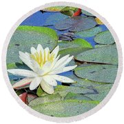Summer Water Lily Round Beach Towel