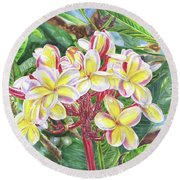 Summertime Kauai Island Plumeria Watercolor By Jenny Floravita Round Beach Towel