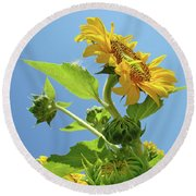 Sun Flower Artwork Sunflower 5 Giclee Art Prints Baslee Troutman Round Beach Towel