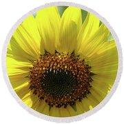 Sun Flower Glow Art Print Summer Sunflowers Baslee Troutman Round Beach Towel