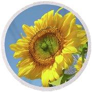Sun Flowers Garden Art Prints Baslee Troutman Round Beach Towel