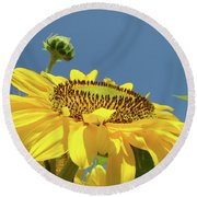 Sun Flowers Summer Sunny Day 8 Blue Skies Giclee Art Prints Baslee Troutman Round Beach Towel