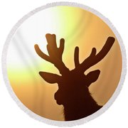Sun Glaring Over A Bull Elk Round Beach Towel