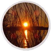 Sun In Reeds Round Beach Towel
