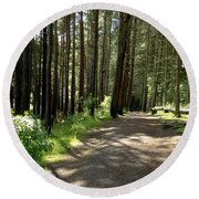 Sun In The Forest. Round Beach Towel