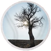 Sun Rays And Bare Lonely Tree Round Beach Towel