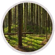 Sun Rays In Forest Round Beach Towel
