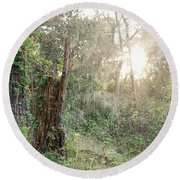 Sun Shining Through Trees In A Mysterious Forest Round Beach Towel