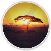 Sun Through Acacia Round Beach Towel