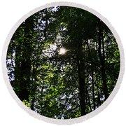 Sun Through Trees In Forest Round Beach Towel