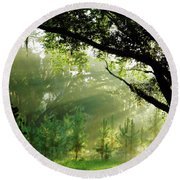 Sunbeams In The Forest Round Beach Towel