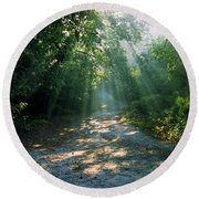 Sunbeams Through Trees Round Beach Towel