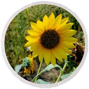 Sunflower 12 Round Beach Towel