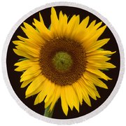 Sunflower 3 Round Beach Towel