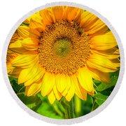 Sunflower 7 Round Beach Towel