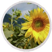 Sunflower And Peaks Of Otter Round Beach Towel